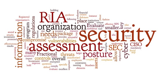 (RIA) Cyber Security Assessment