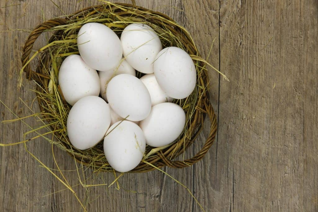 basket of password eggs